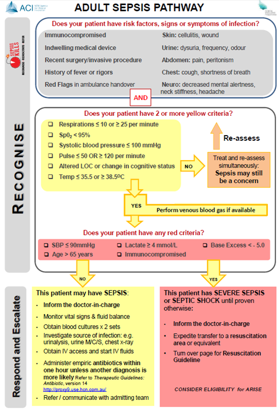 Adult sepsis pathway check of patient in shock, with blood pressure, respiration, heart functions to give oxygen or the right venous treatment